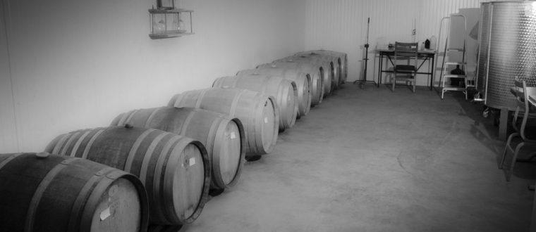 תהליך השפייה שלב חשוב בייצור יין לפני העברתו להתיישנות בחבית